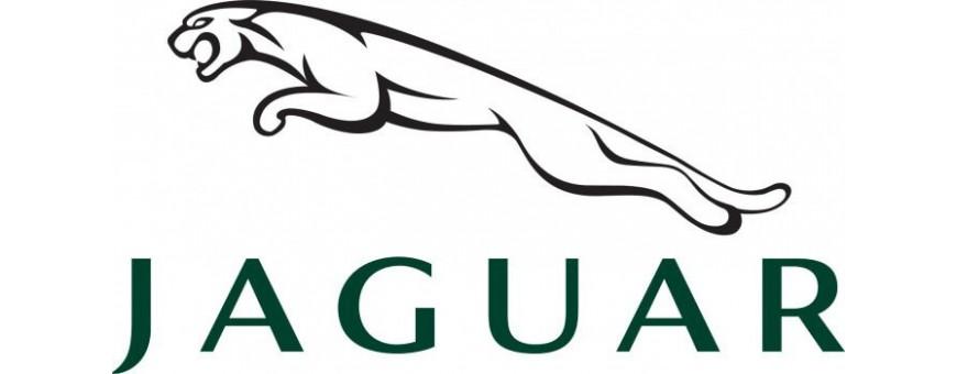 Duplicazione Chiavi Jaguar